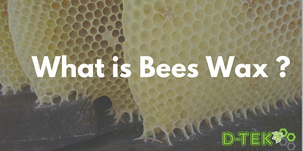 What is Bees Wax