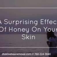 A Surprising Effect Of Honey On Your Skin