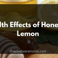 Health Effects of Manuka Honey And Lemon